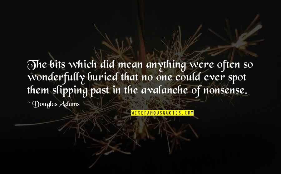 Avalanche Quotes By Douglas Adams: The bits which did mean anything were often