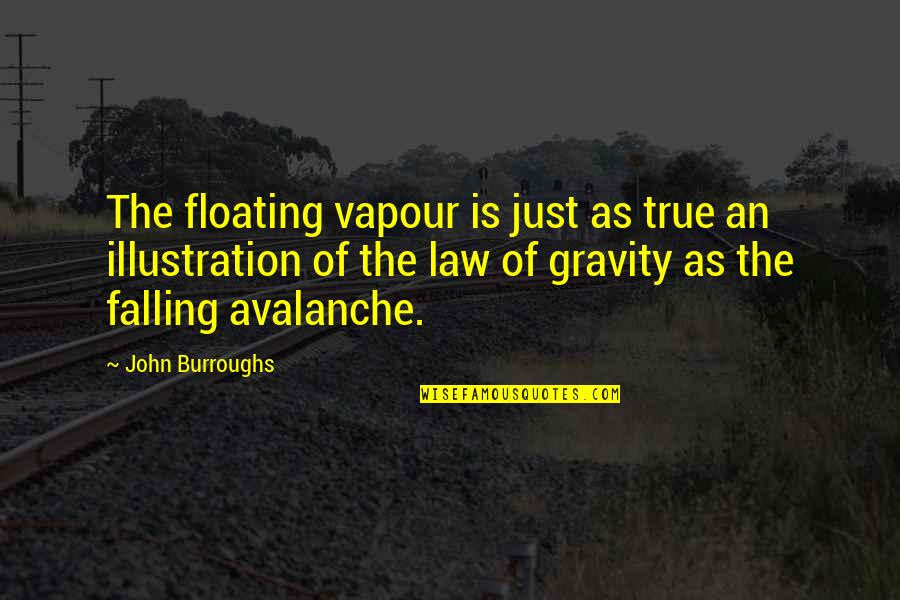 Avalanche Quotes By John Burroughs: The floating vapour is just as true an