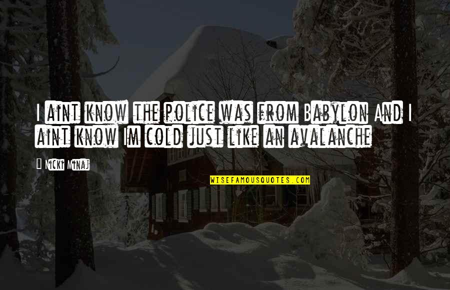 Avalanche Quotes By Nicki Minaj: I aint know the police was from Babylon
