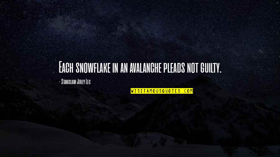 Avalanche Quotes By Stanislaw Jerzy Lec: Each snowflake in an avalanche pleads not guilty.