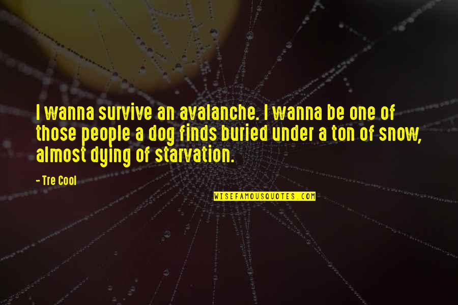 Avalanche Quotes By Tre Cool: I wanna survive an avalanche. I wanna be