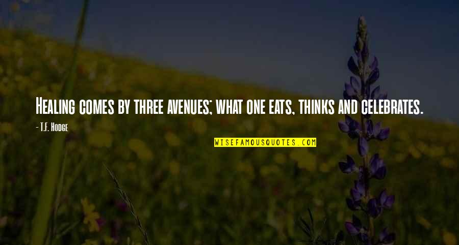 Avenues Quotes By T.F. Hodge: Healing comes by three avenues; what one eats,
