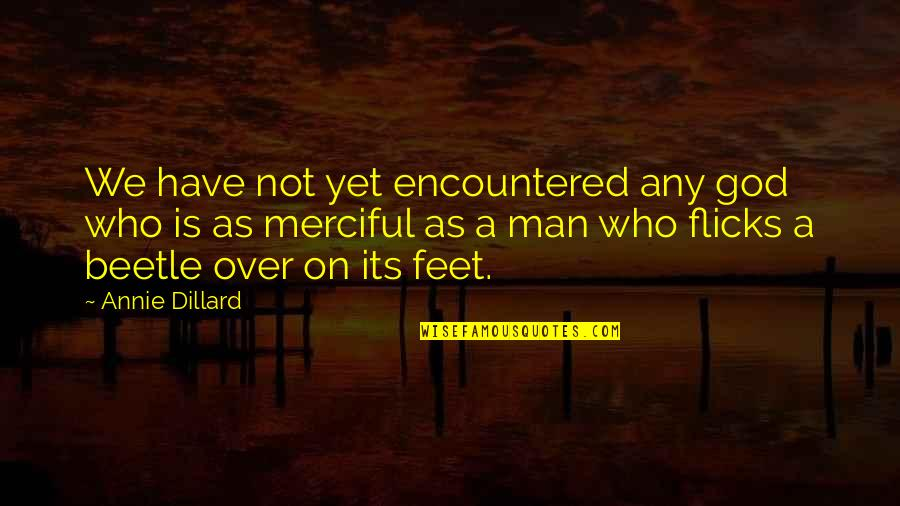 Averell Dalton Quotes By Annie Dillard: We have not yet encountered any god who