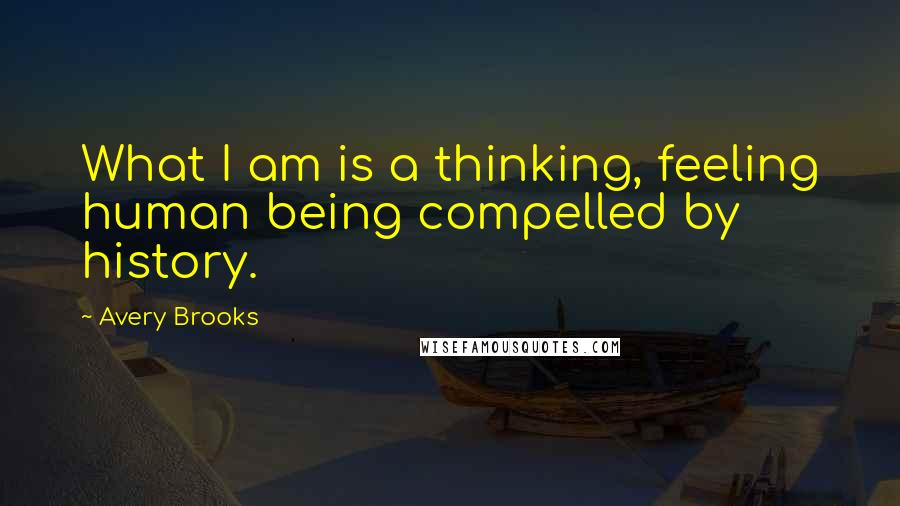 Avery Brooks quotes: What I am is a thinking, feeling human being compelled by history.