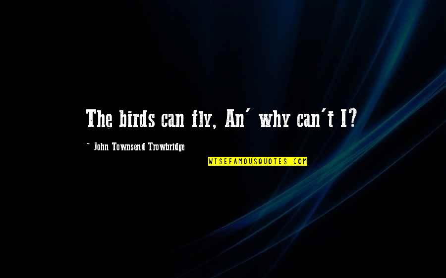 Aviation's Quotes By John Townsend Trowbridge: The birds can fly, An' why can't I?