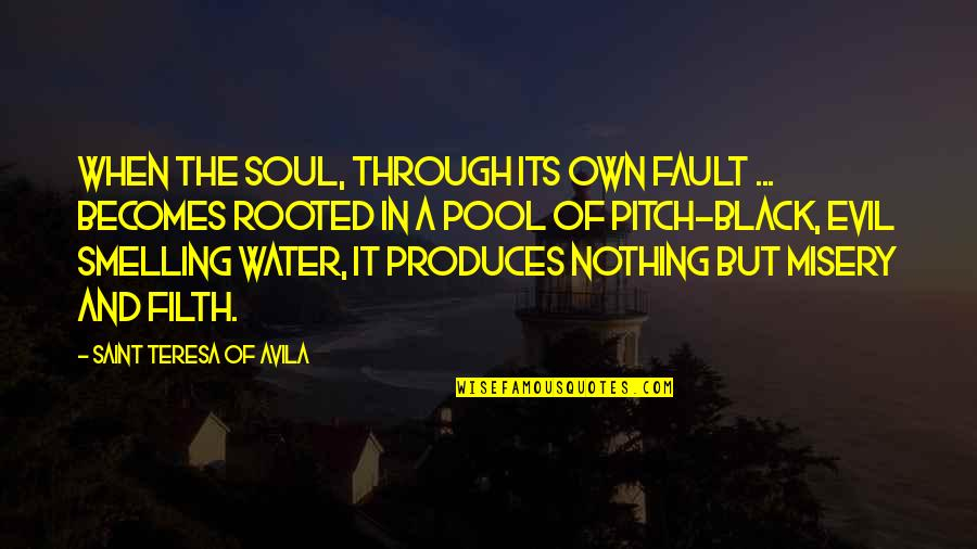 Avila Quotes By Saint Teresa Of Avila: When the soul, through its own fault ...