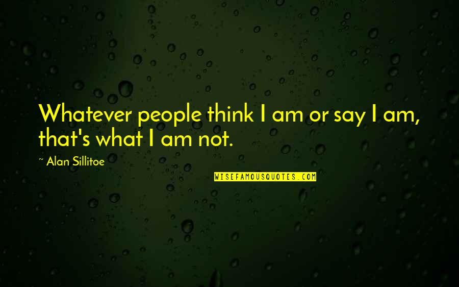 Awareness's Quotes By Alan Sillitoe: Whatever people think I am or say I