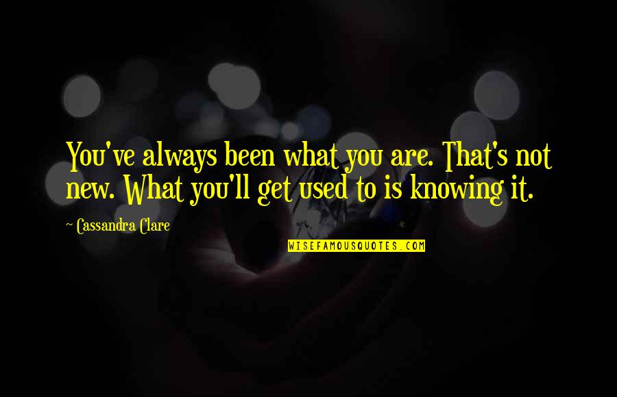 Awareness's Quotes By Cassandra Clare: You've always been what you are. That's not