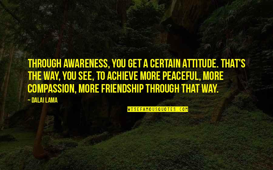 Awareness's Quotes By Dalai Lama: Through awareness, you get a certain attitude. That's