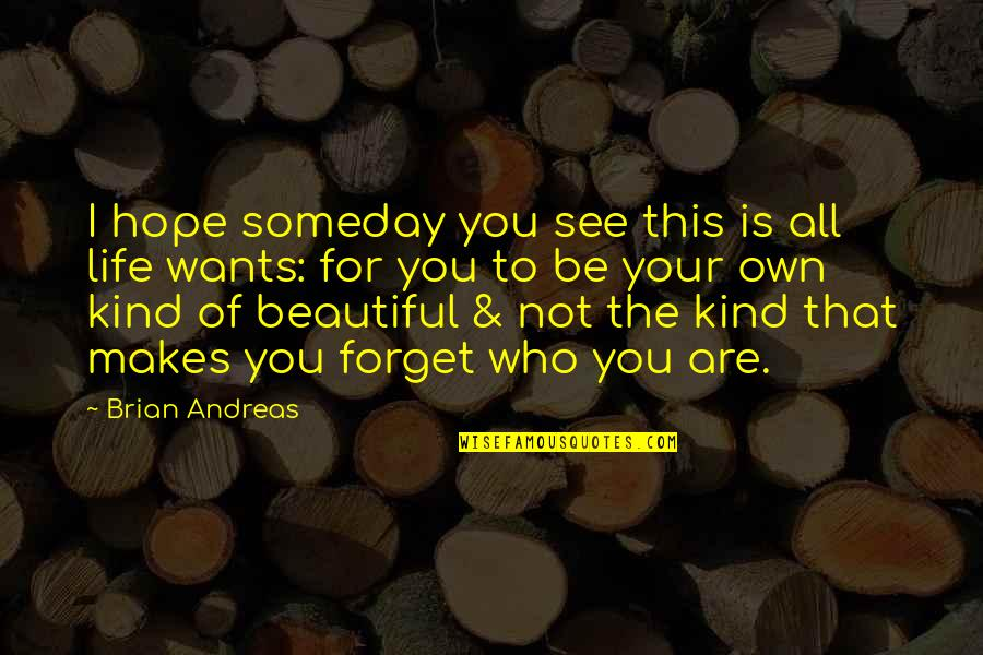 Awargi Quotes By Brian Andreas: I hope someday you see this is all