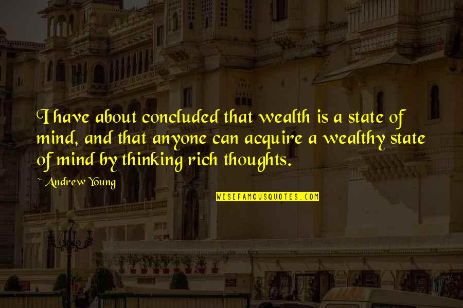 Axils Quotes By Andrew Young: I have about concluded that wealth is a