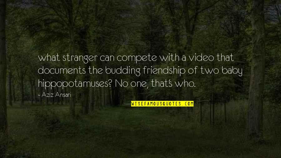 Aziz Quotes By Aziz Ansari: what stranger can compete with a video that