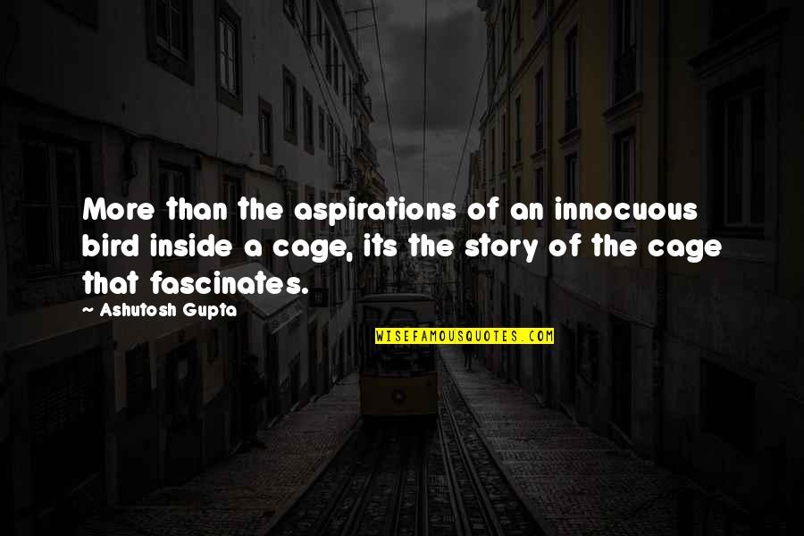 B J Gupta Quotes By Ashutosh Gupta: More than the aspirations of an innocuous bird