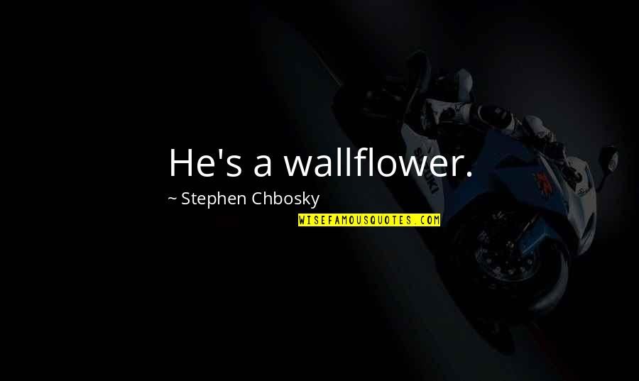 Baal Cycle Quotes By Stephen Chbosky: He's a wallflower.