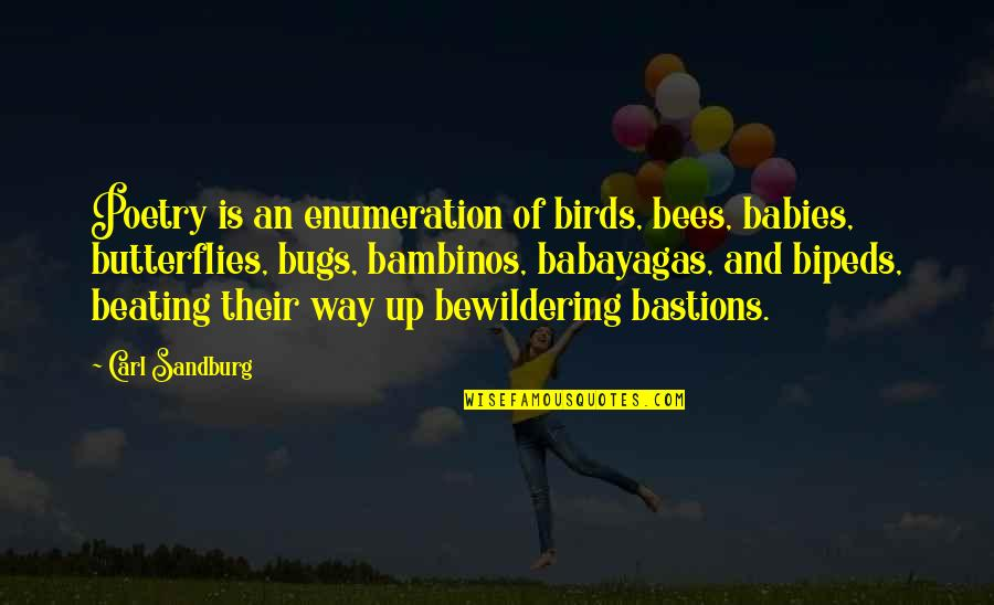 Babies And Butterflies Quotes By Carl Sandburg: Poetry is an enumeration of birds, bees, babies,