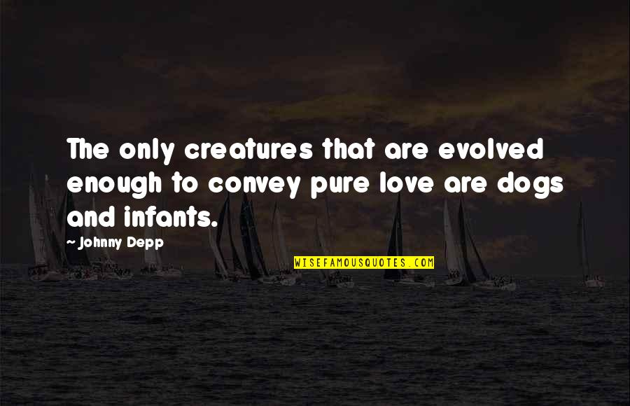 Babies Are Pure Quotes By Johnny Depp: The only creatures that are evolved enough to