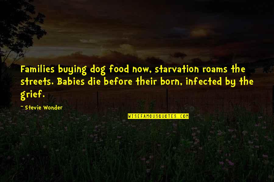 Baby Born Quotes By Stevie Wonder: Families buying dog food now, starvation roams the