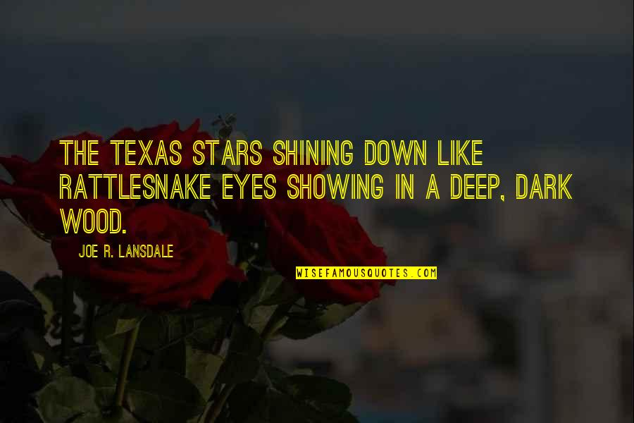 Baby Monthly Birthday Quotes By Joe R. Lansdale: the Texas stars shining down like rattlesnake eyes