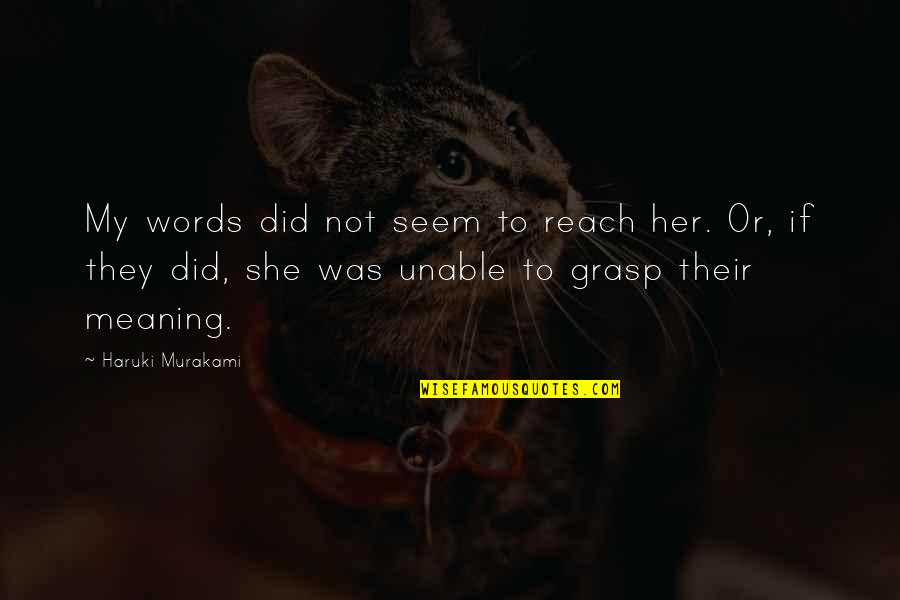 Baby's 1st Tooth Quotes By Haruki Murakami: My words did not seem to reach her.