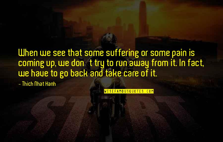 Back It Up Quotes By Thich Nhat Hanh: When we see that some suffering or some
