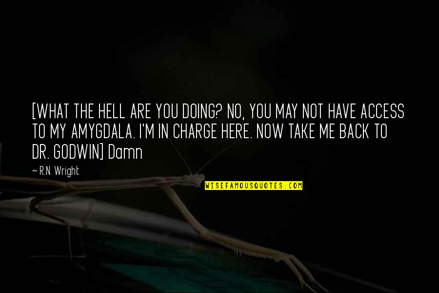 Back To Hell Quotes By R.N. Wright: [WHAT THE HELL ARE YOU DOING? NO, YOU