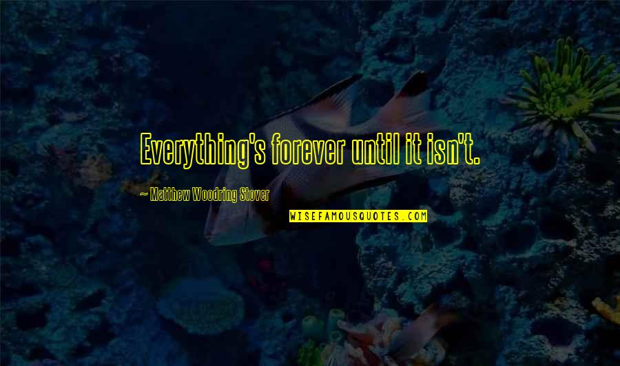 Backbeat Quotes By Matthew Woodring Stover: Everything's forever until it isn't.