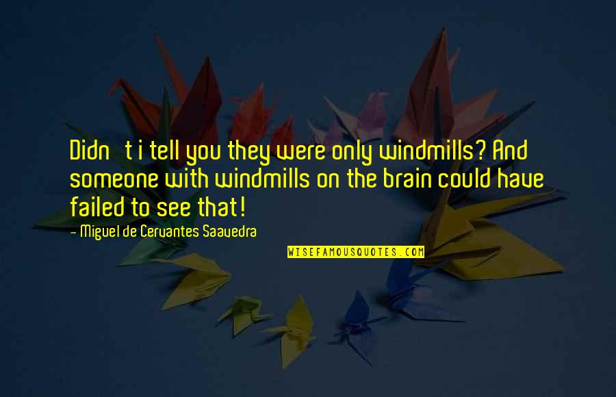 Backstabbers Picture Quotes By Miguel De Cervantes Saavedra: Didn't i tell you they were only windmills?