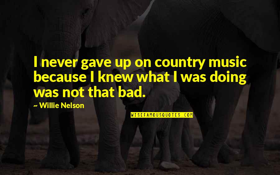 Bad Doing Quotes By Willie Nelson: I never gave up on country music because