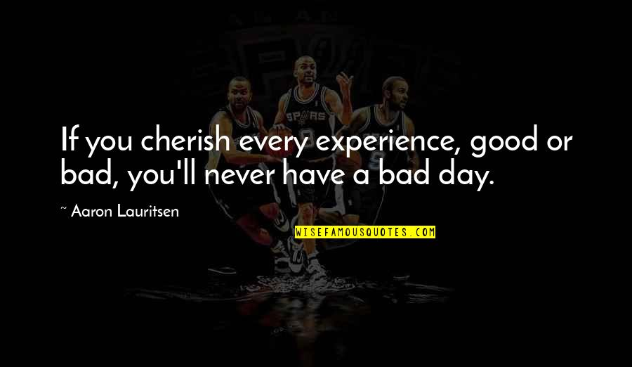 Bad Experience Quotes By Aaron Lauritsen: If you cherish every experience, good or bad,