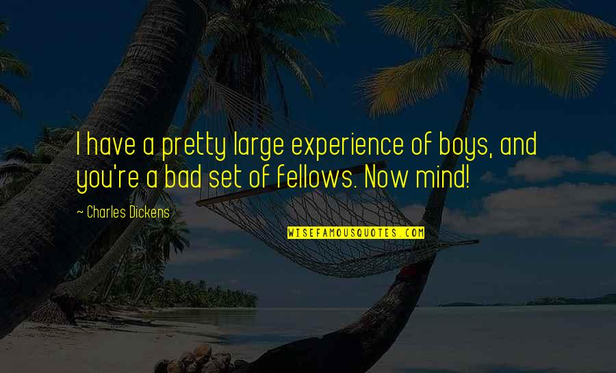 Bad Experience Quotes By Charles Dickens: I have a pretty large experience of boys,