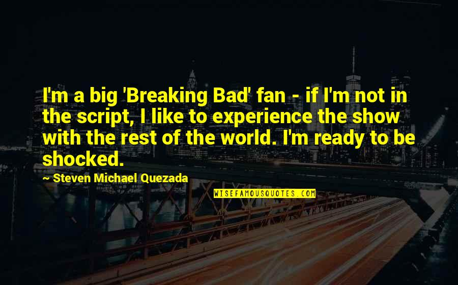 Bad Experience Quotes By Steven Michael Quezada: I'm a big 'Breaking Bad' fan - if