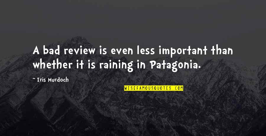 Bad Reviews Quotes By Iris Murdoch: A bad review is even less important than