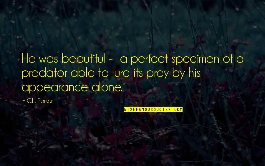 Baleful Quotes By C.L. Parker: He was beautiful - a perfect specimen of