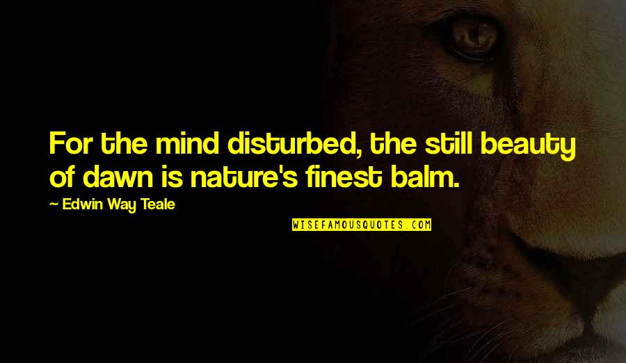 Balm Quotes By Edwin Way Teale: For the mind disturbed, the still beauty of