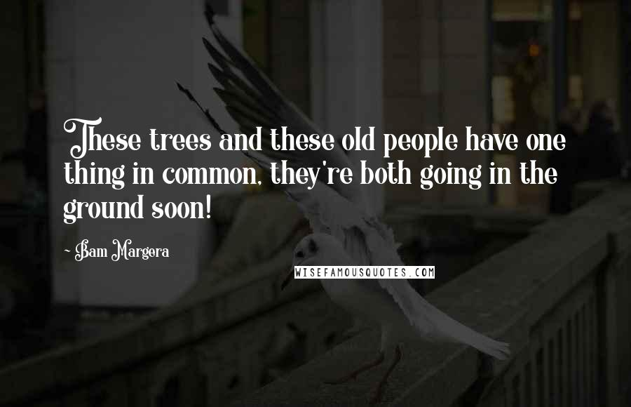 Bam Margera quotes: These trees and these old people have one thing in common, they're both going in the ground soon!