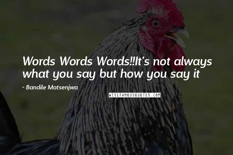 Bandile Matsenjwa quotes: Words Words Words!!It's not always what you say but how you say it