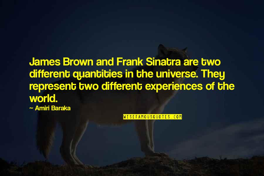 Baraka's Quotes By Amiri Baraka: James Brown and Frank Sinatra are two different