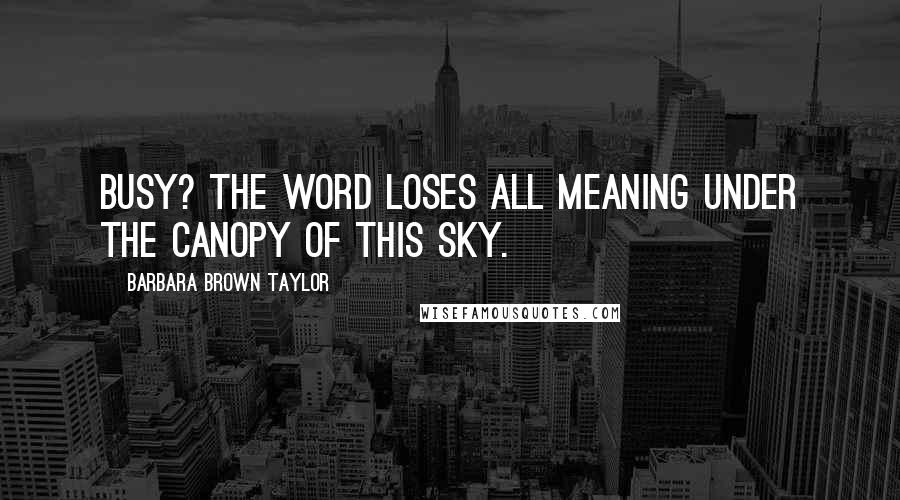 Barbara Brown Taylor quotes: Busy? The word loses all meaning under the canopy of this sky.
