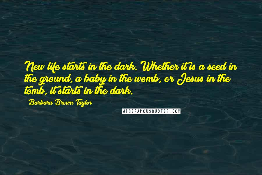 Barbara Brown Taylor quotes: New life starts in the dark. Whether it is a seed in the ground, a baby in the womb, or Jesus in the tomb, it starts in the dark.