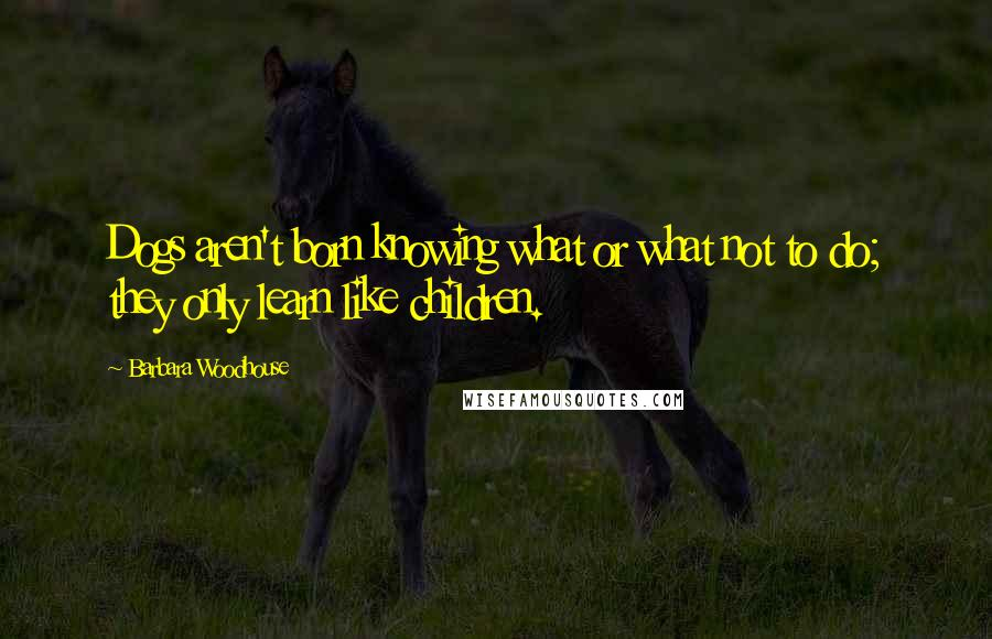 Barbara Woodhouse quotes: Dogs aren't born knowing what or what not to do; they only learn like children.