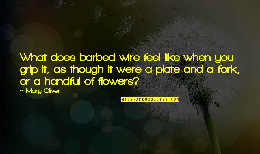 Barbed Wire Quotes By Mary Oliver: What does barbed wire feel like when you