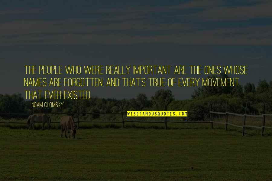 Barqi Quotes By Noam Chomsky: The people who were really important are the