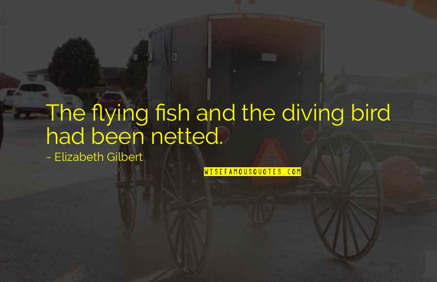 Barracus Quotes By Elizabeth Gilbert: The flying fish and the diving bird had