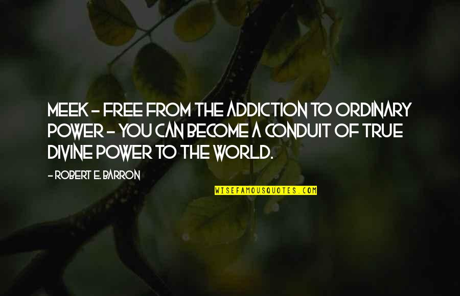 Barron Quotes By Robert E. Barron: Meek - free from the addiction to ordinary