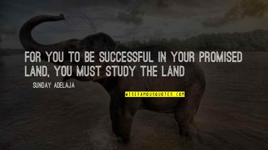Barry Davies Quotes By Sunday Adelaja: For you to be successful in your promised