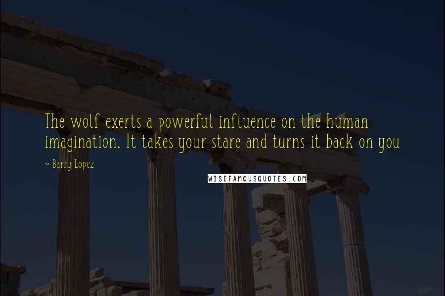 Barry Lopez quotes: The wolf exerts a powerful influence on the human imagination. It takes your stare and turns it back on you