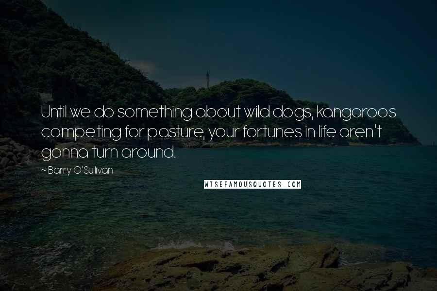 Barry O'Sullivan quotes: Until we do something about wild dogs, kangaroos competing for pasture, your fortunes in life aren't gonna turn around.