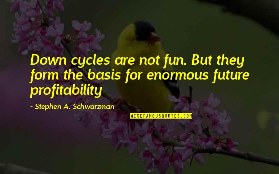 Basis Quotes By Stephen A. Schwarzman: Down cycles are not fun. But they form