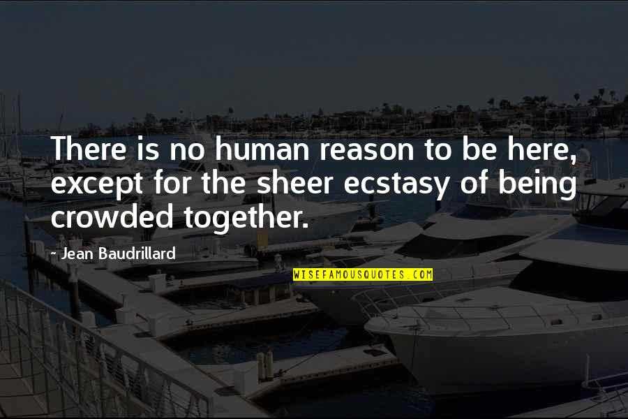 Baudrillard Quotes By Jean Baudrillard: There is no human reason to be here,