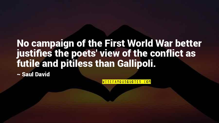Bbses Quotes By Saul David: No campaign of the First World War better